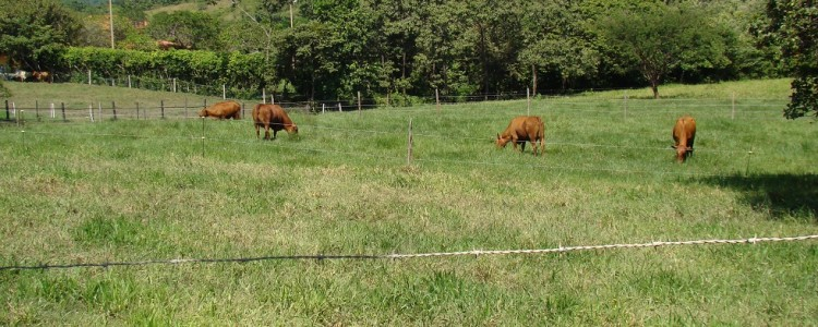 hemingway_ranch
